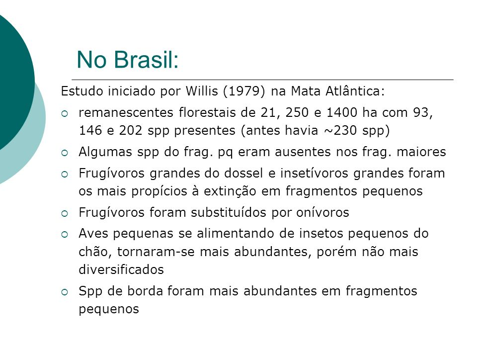 No Brasil: Estudo iniciado por Willis (1979) na Mata Atlântica: remanescentes florestais de 21, 250 e 1400 ha com 93, 146 e 202 spp presentes (antes h