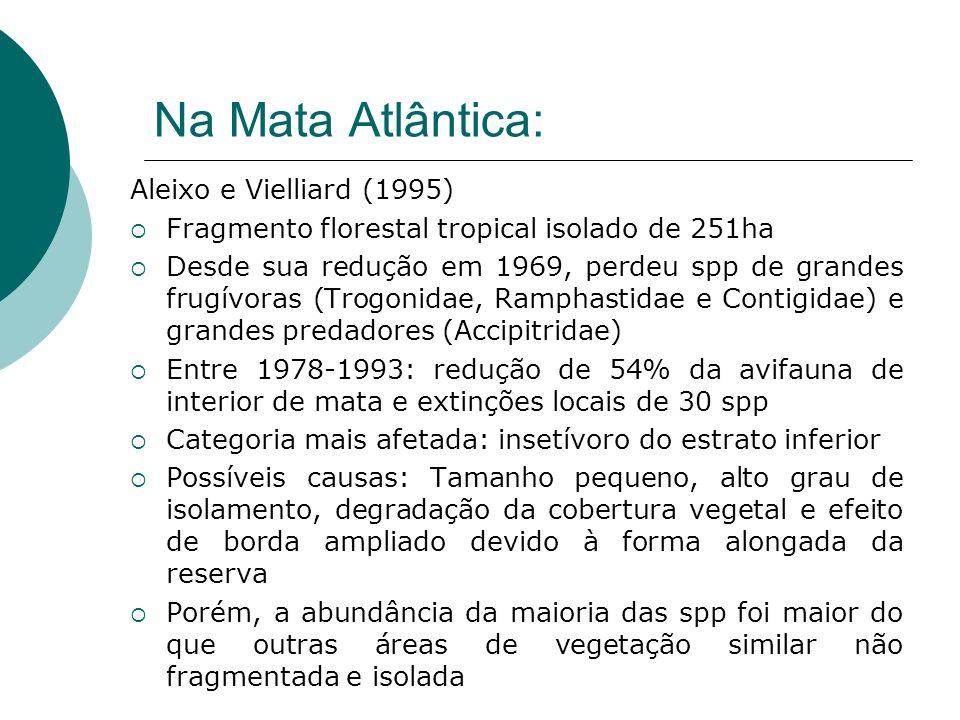 Na Mata Atlântica: Aleixo e Vielliard (1995) Fragmento florestal tropical isolado de 251ha Desde sua redução em 1969, perdeu spp de grandes frugívoras