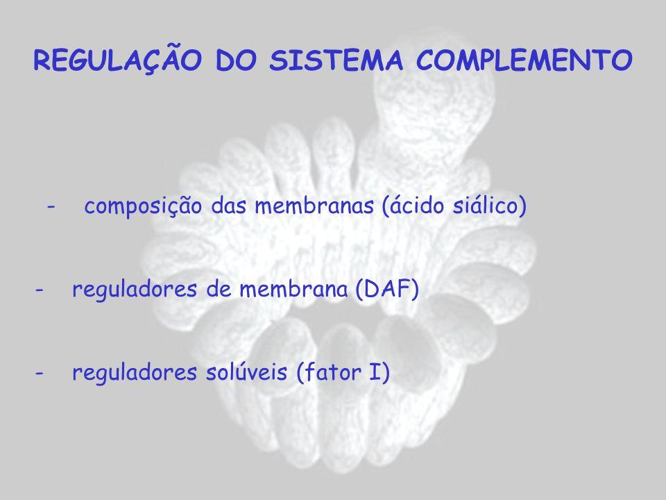 REGULAÇÃO DO SISTEMA COMPLEMENTO - composição das membranas (ácido siálico) - reguladores de membrana (DAF) - reguladores solúveis (fator I)