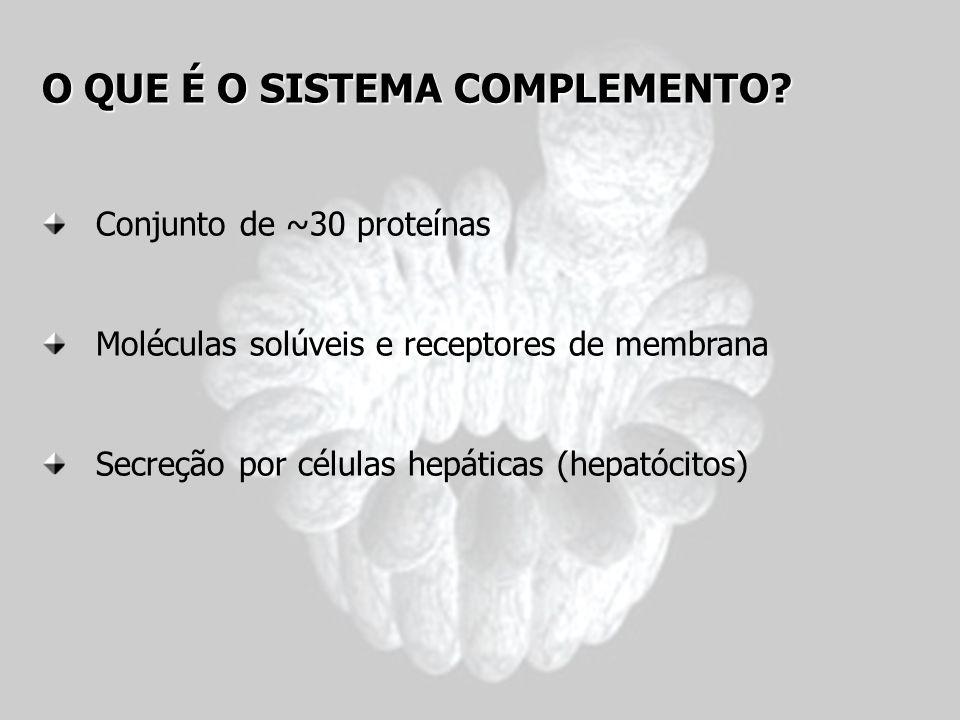 O QUE É O SISTEMA COMPLEMENTO? Conjunto de ~30 proteínas Moléculas solúveis e receptores de membrana Secreção por células hepáticas (hepatócitos)