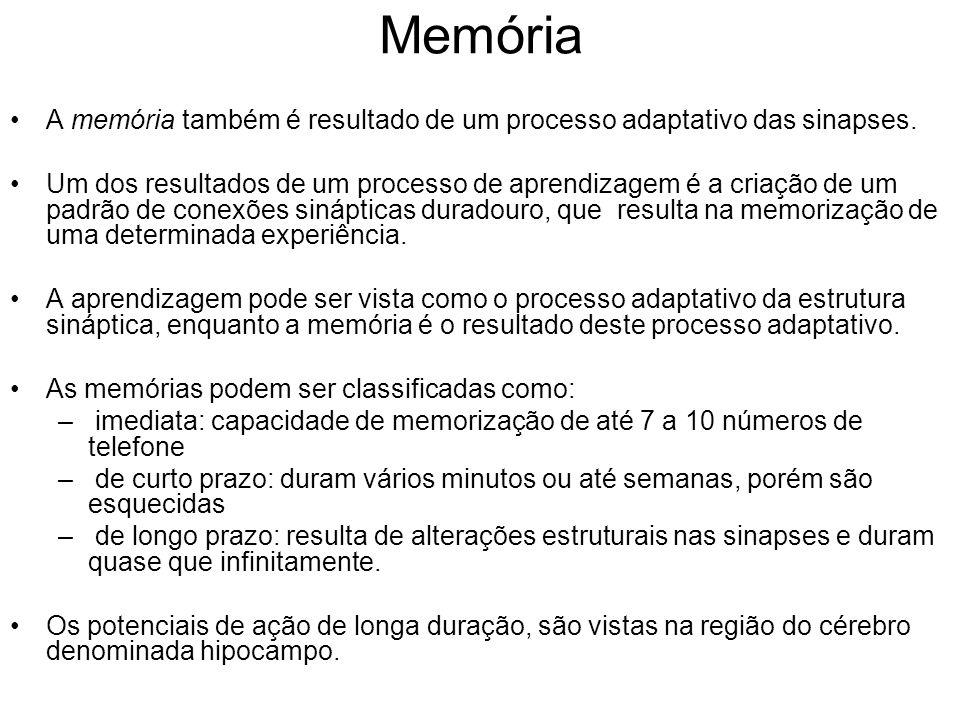 Memória A memória também é resultado de um processo adaptativo das sinapses. Um dos resultados de um processo de aprendizagem é a criação de um padrão