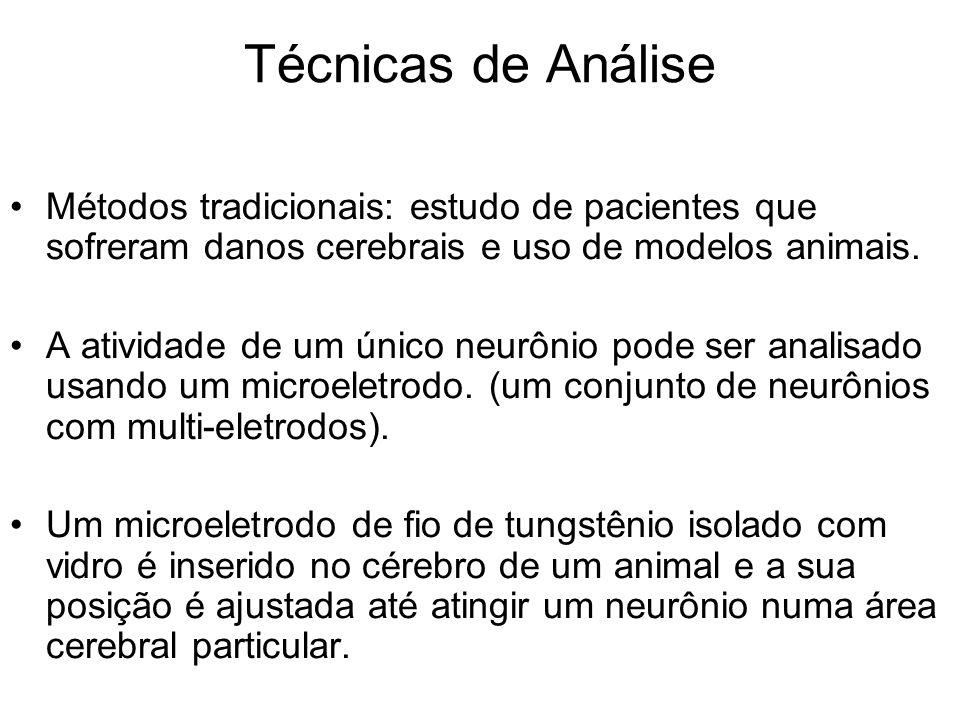 Técnicas de Análise Métodos tradicionais: estudo de pacientes que sofreram danos cerebrais e uso de modelos animais. A atividade de um único neurônio