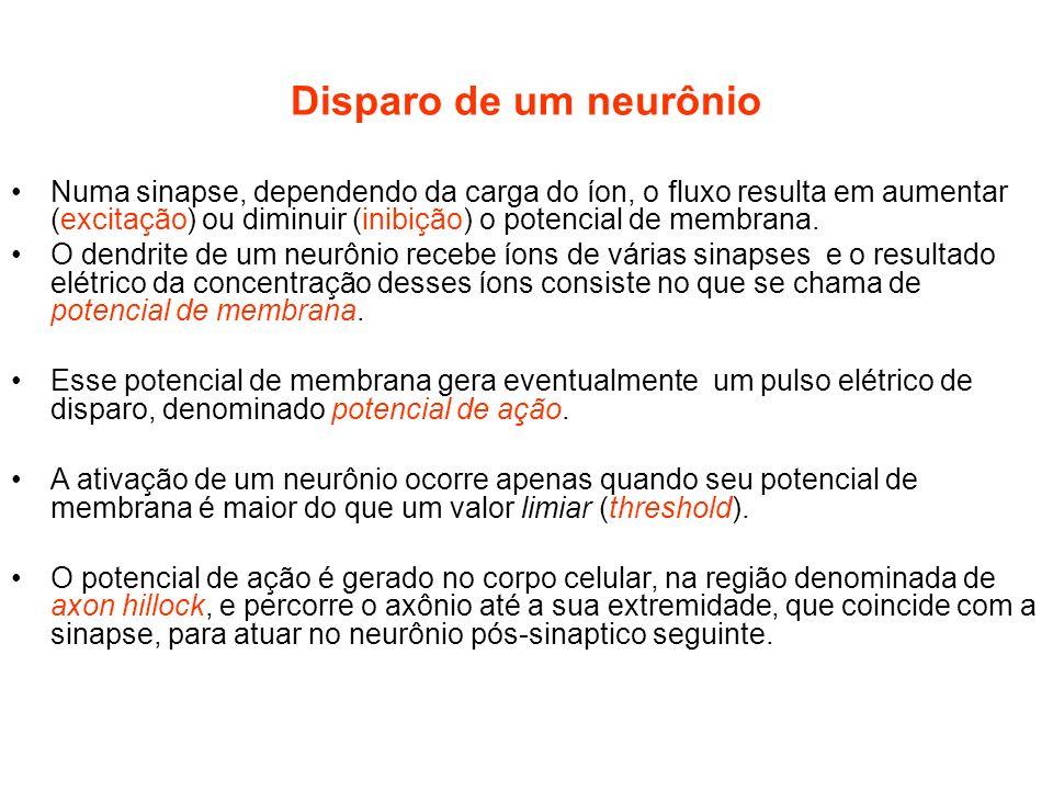Disparo de um neurônio Numa sinapse, dependendo da carga do íon, o fluxo resulta em aumentar (excitação) ou diminuir (inibição) o potencial de membran