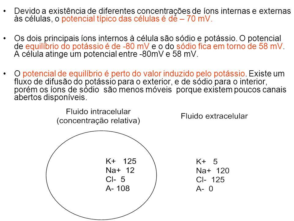 Devido a existência de diferentes concentrações de íons internas e externas às células, o potencial típico das células é de – 70 mV. Os dois principai