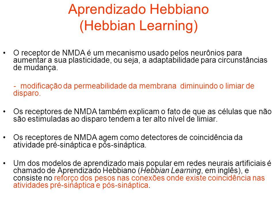 Aprendizado Hebbiano (Hebbian Learning) O receptor de NMDA é um mecanismo usado pelos neurônios para aumentar a sua plasticidade, ou seja, a adaptabil
