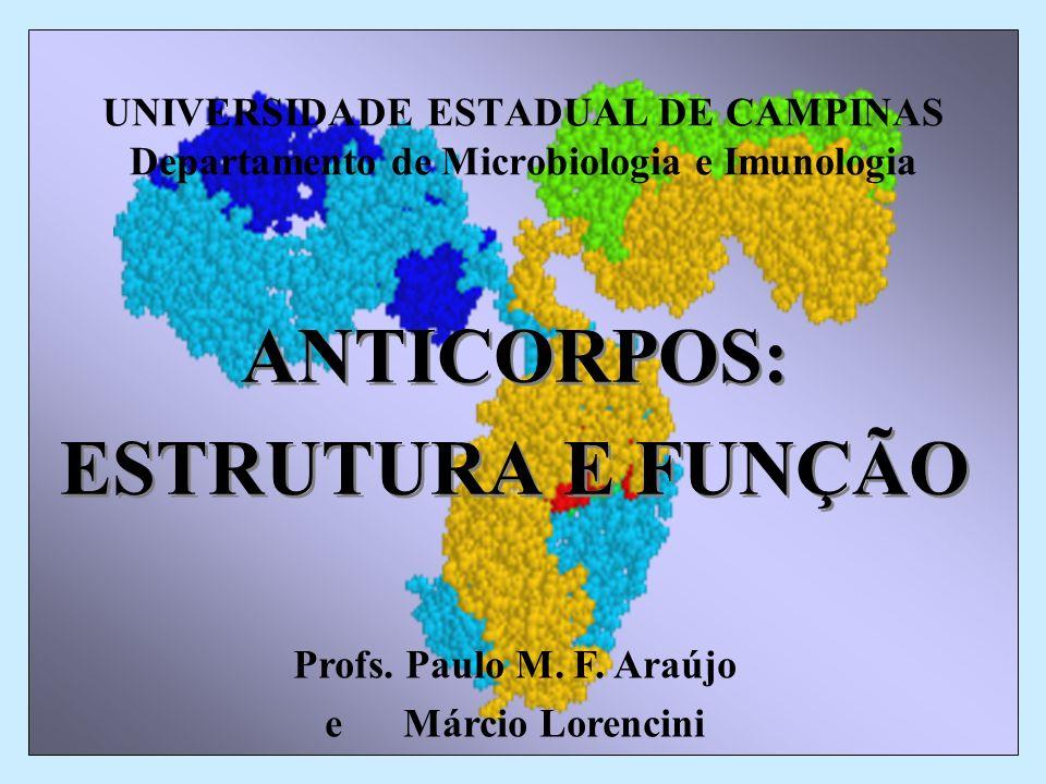 UNIVERSIDADE ESTADUAL DE CAMPINAS Departamento de Microbiologia e Imunologia ANTICORPOS: ESTRUTURA E FUNÇÃO ANTICORPOS: ESTRUTURA E FUNÇÃO Profs. Paul