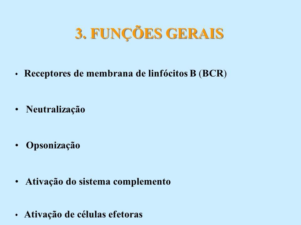 Receptores de membrana de linfócitos B (BCR) Neutralização Opsonização Ativação do sistema complemento Ativação de células efetoras 3. FUNÇÕES GERAIS