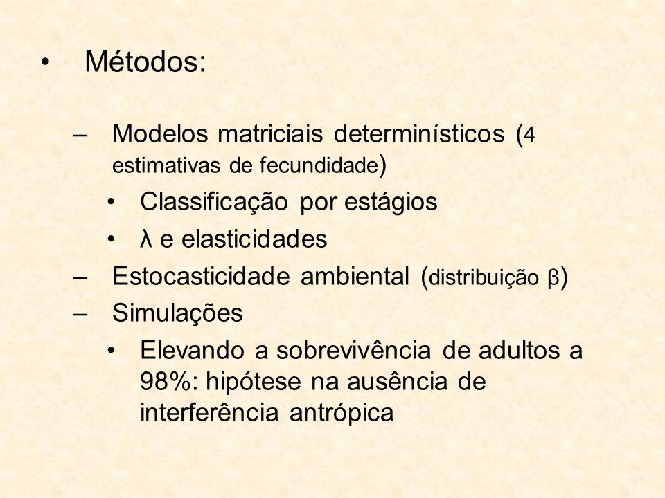 Métodos: –Modelos matriciais determinísticos ( 4 estimativas de fecundidade ) Classificação por estágios λ e elasticidades –Estocasticidade ambiental
