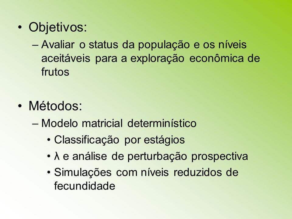 Objetivos: –Avaliar o status da população e os níveis aceitáveis para a exploração econômica de frutos Métodos: –Modelo matricial determinístico Class