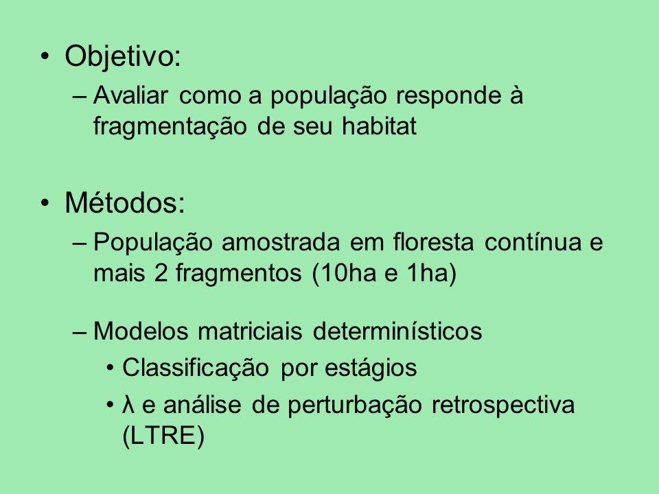 Objetivo: –Avaliar como a população responde à fragmentação de seu habitat Métodos: –População amostrada em floresta contínua e mais 2 fragmentos (10h
