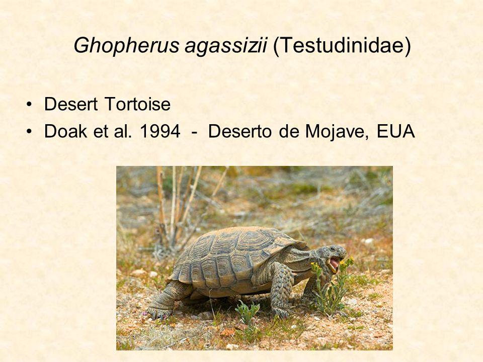 Ghopherus agassizii (Testudinidae) Desert Tortoise Doak et al. 1994 - Deserto de Mojave, EUA