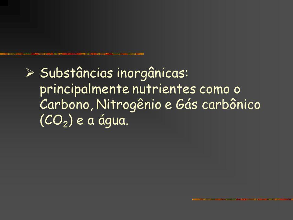 Substâncias inorgânicas: principalmente nutrientes como o Carbono, Nitrogênio e Gás carbônico (CO 2 ) e a água. Substâncias inorgânicas: principalment