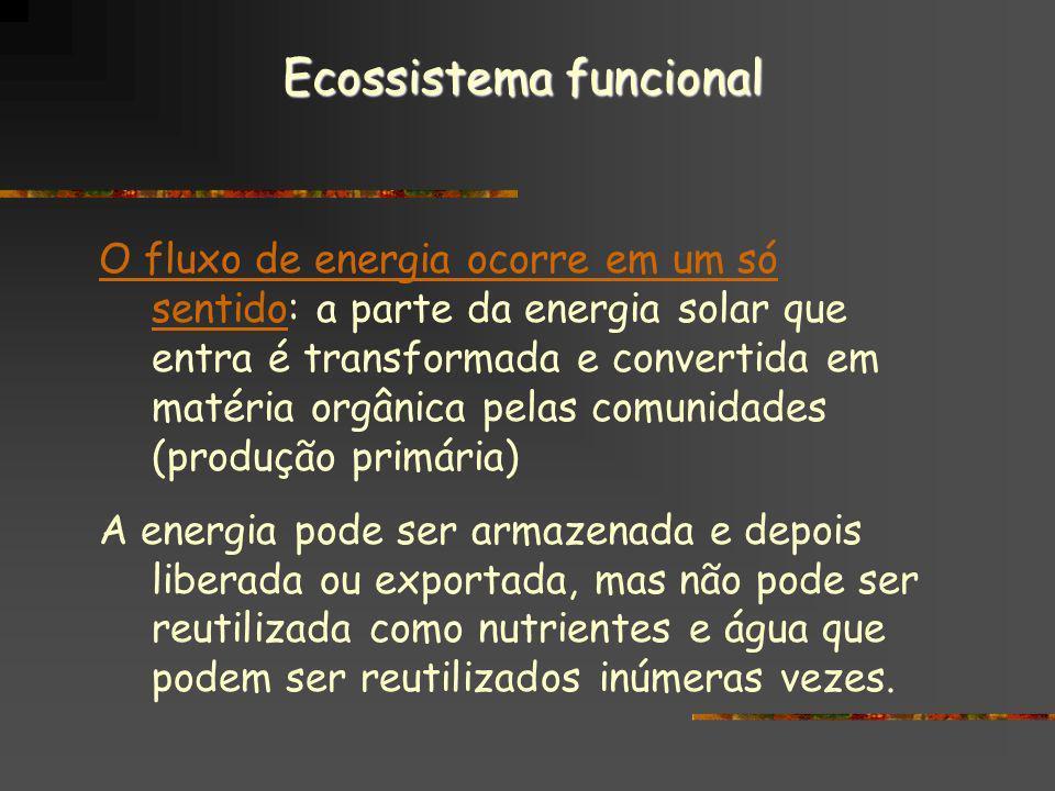 Ecossistema funcional O fluxo de energia ocorre em um só sentidoO fluxo de energia ocorre em um só sentido: a parte da energia solar que entra é trans