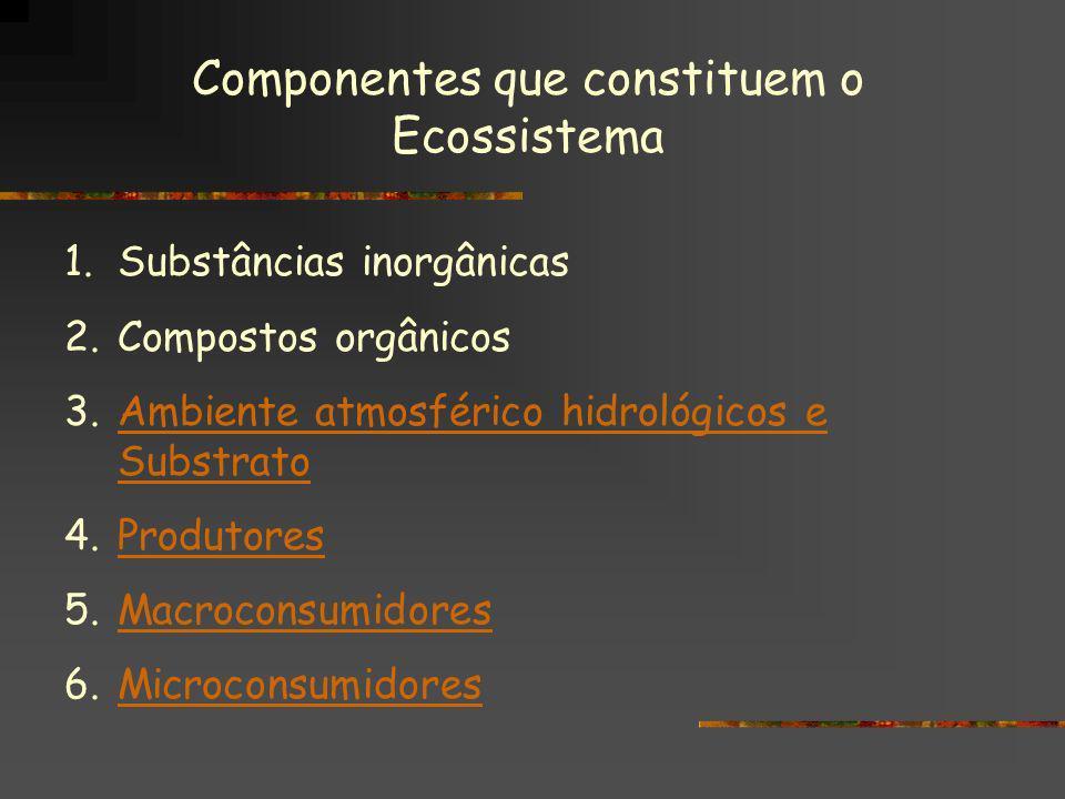 Componentes que constituem o Ecossistema 1.Substâncias inorgânicas 2.Compostos orgânicos 3.Ambiente atmosférico hidrológicos e SubstratoAmbiente atmos