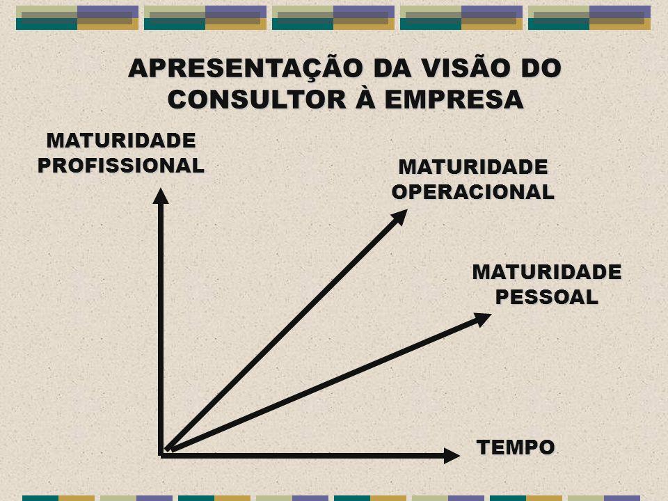 APRESENTAÇÃO DA VISÃO DO CONSULTOR À EMPRESA MATURIDADE PROFISSIONAL MATURIDADE OPERACIONAL MATURIDADE PESSOAL TEMPO