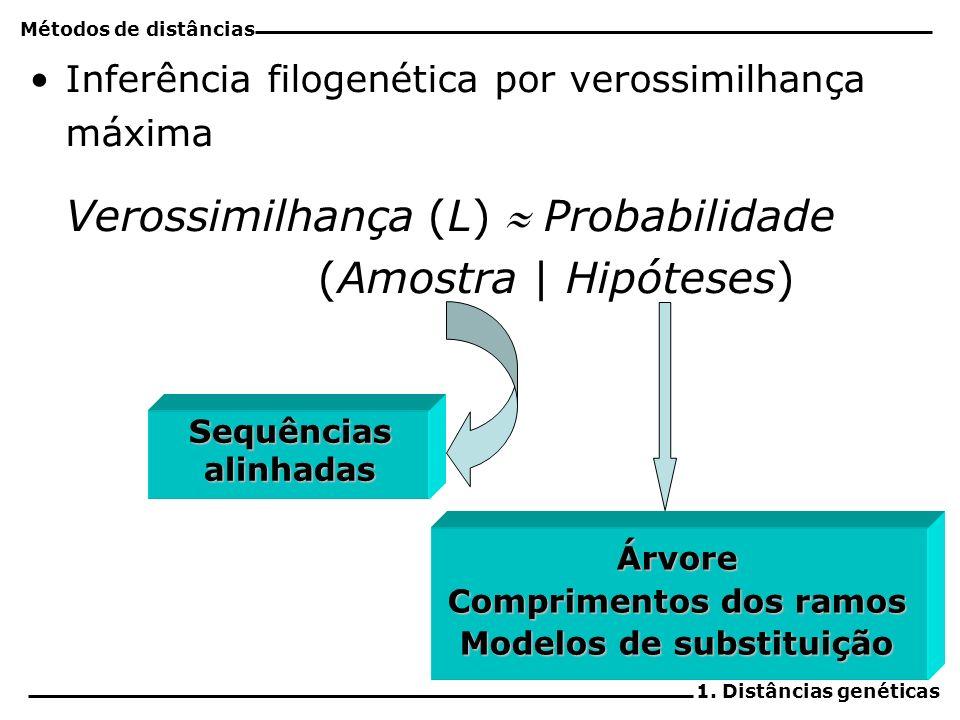 4 Inferência filogenética por verossimilhança máxima Verossimilhança (L) Probabilidade (Amostra | Hipóteses) Sequências alinhadas Árvore Comprimentos