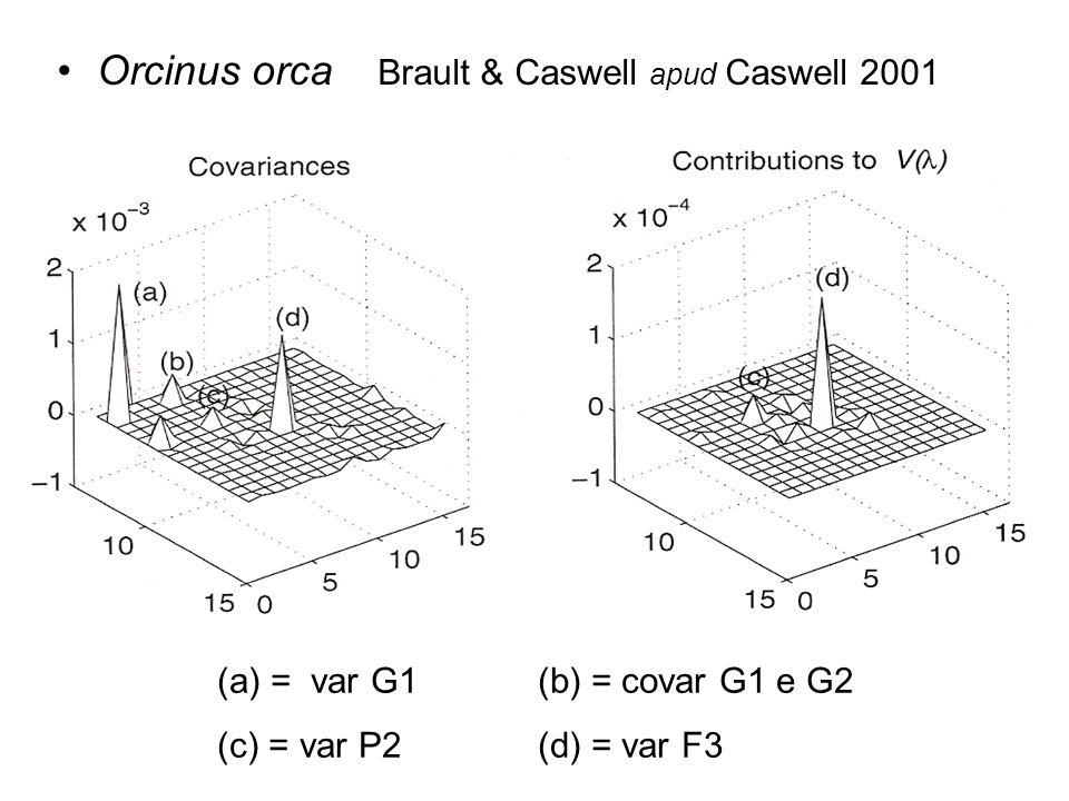 Orcinus orca Brault & Caswell apud Caswell 2001 (a) = var G1(b) = covar G1 e G2 (c) = var P2(d) = var F3
