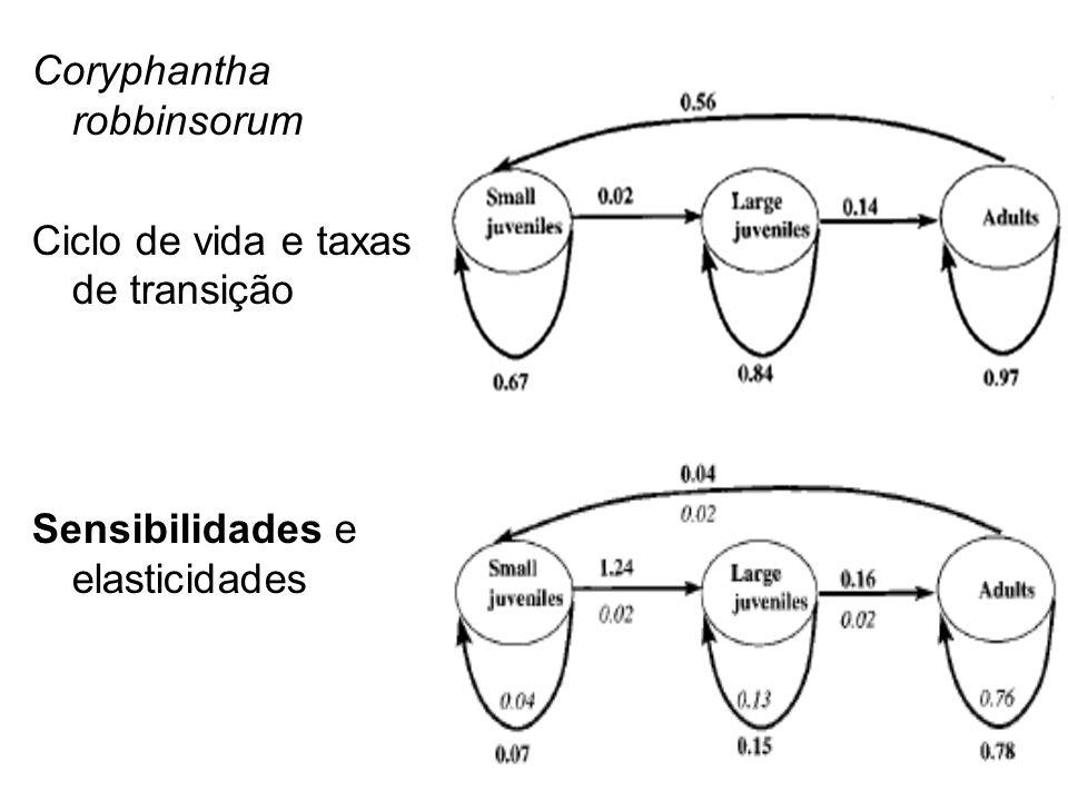 Coryphantha robbinsorum Ciclo de vida e taxas de transição Sensibilidades e elasticidades
