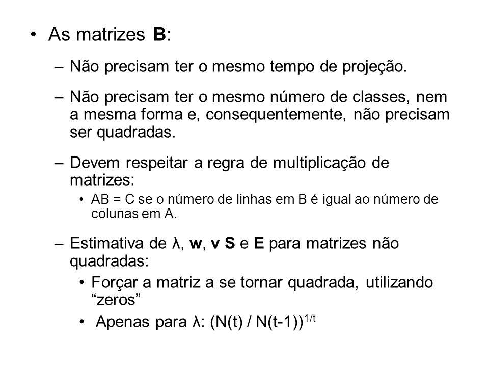 As matrizes B: –Não precisam ter o mesmo tempo de projeção. –Não precisam ter o mesmo número de classes, nem a mesma forma e, consequentemente, não pr