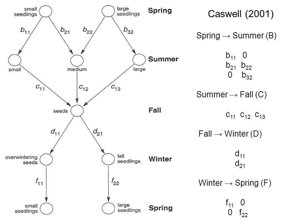 Caswell (2001) Spring Summer (B) b 11 0 b 21 b 22 0 b 32 Summer Fall (C) c 11 c 12 c 13 Fall Winter (D) d 11 d 21 Winter Spring (F) f 11 0 0 f 22