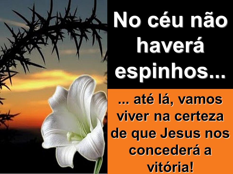 No céu não haverá espinhos...... até lá, vamos viver na certeza de que Jesus nos concederá a vitória!