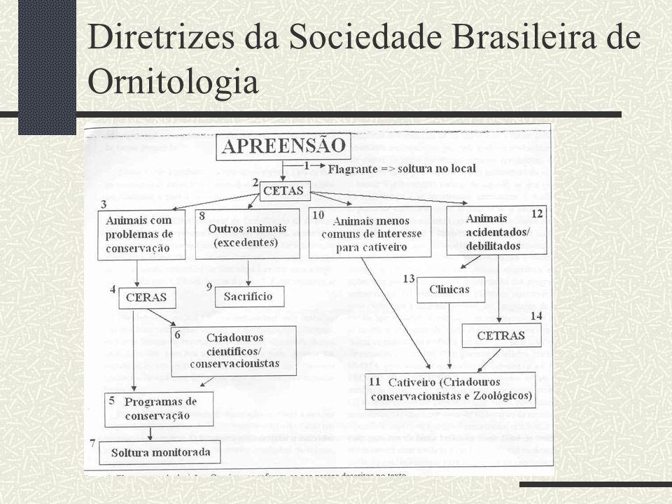 Diretrizes da Sociedade Brasileira de Ornitologia