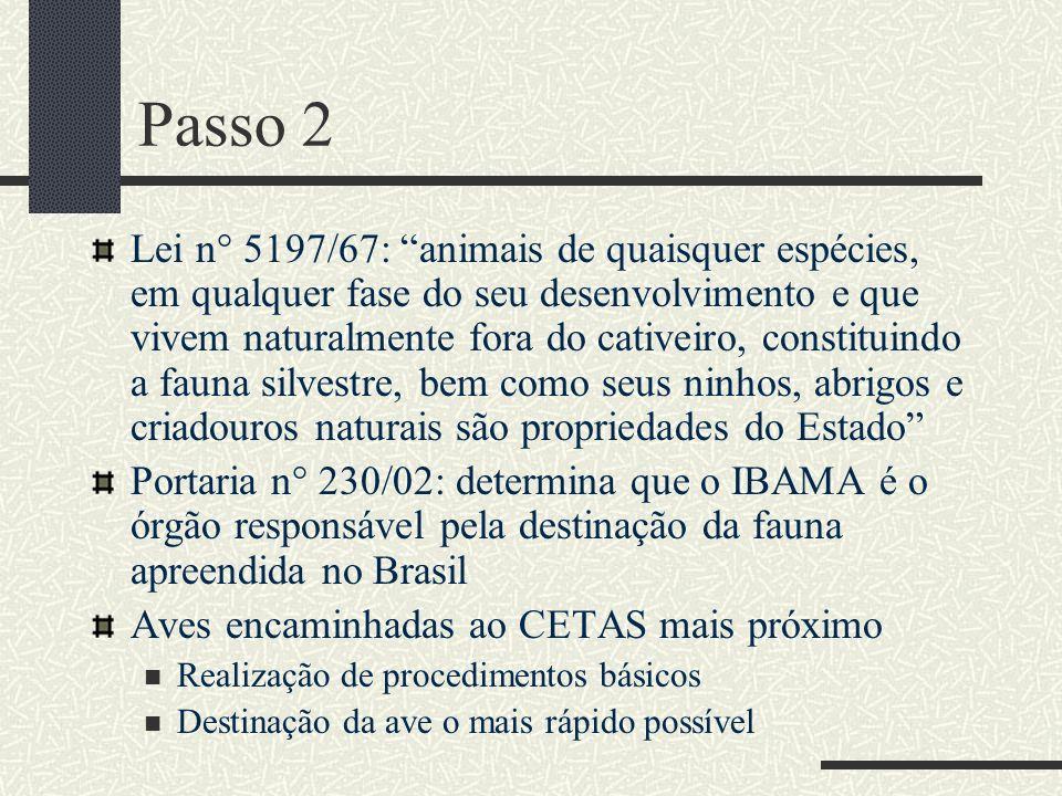 Passo 2 Lei n° 5197/67: animais de quaisquer espécies, em qualquer fase do seu desenvolvimento e que vivem naturalmente fora do cativeiro, constituind