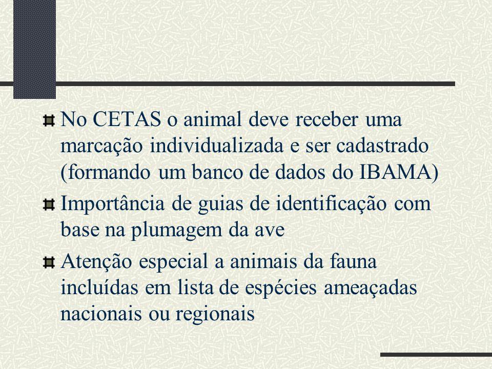No CETAS o animal deve receber uma marcação individualizada e ser cadastrado (formando um banco de dados do IBAMA) Importância de guias de identificaç