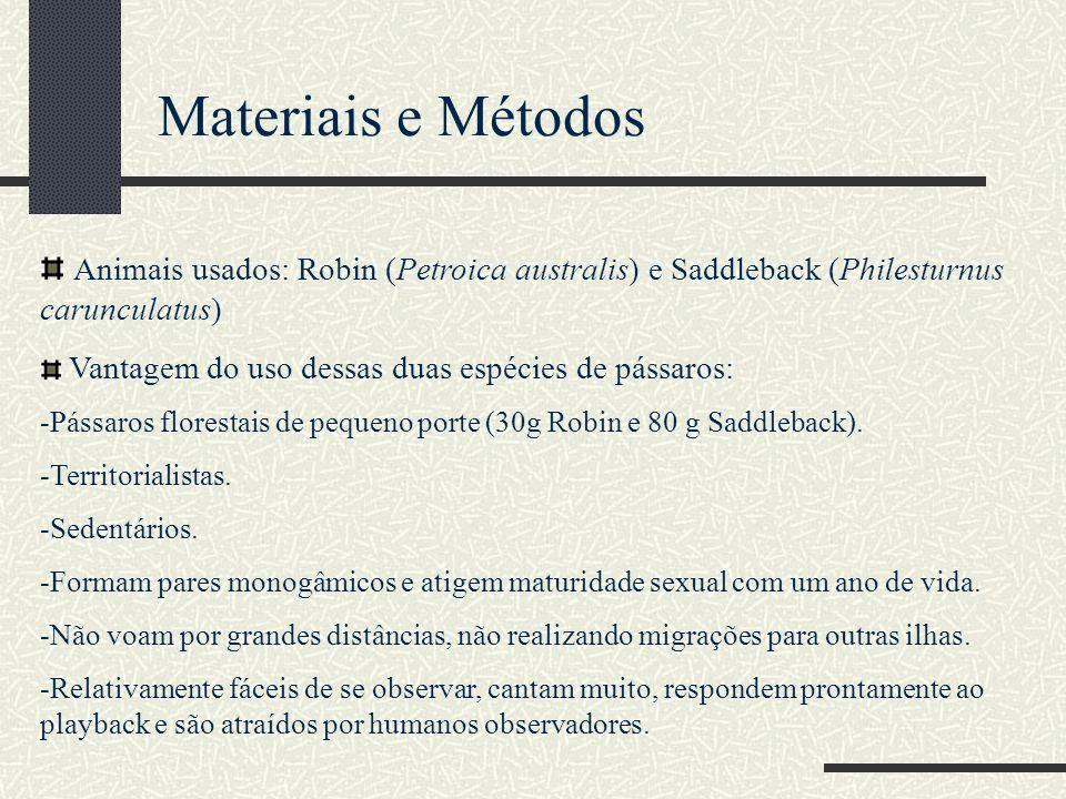 Materiais e Métodos Animais usados: Robin (Petroica australis) e Saddleback (Philesturnus carunculatus) Vantagem do uso dessas duas espécies de pássar