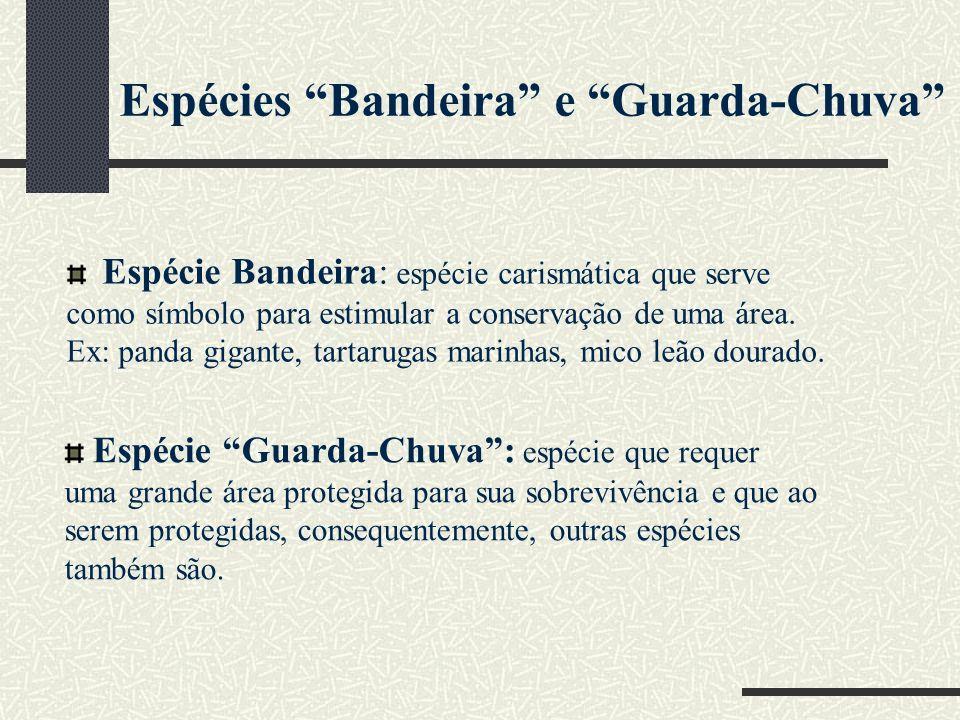 Espécies Bandeira e Guarda-Chuva Espécie Bandeira: espécie carismática que serve como símbolo para estimular a conservação de uma área. Ex: panda giga