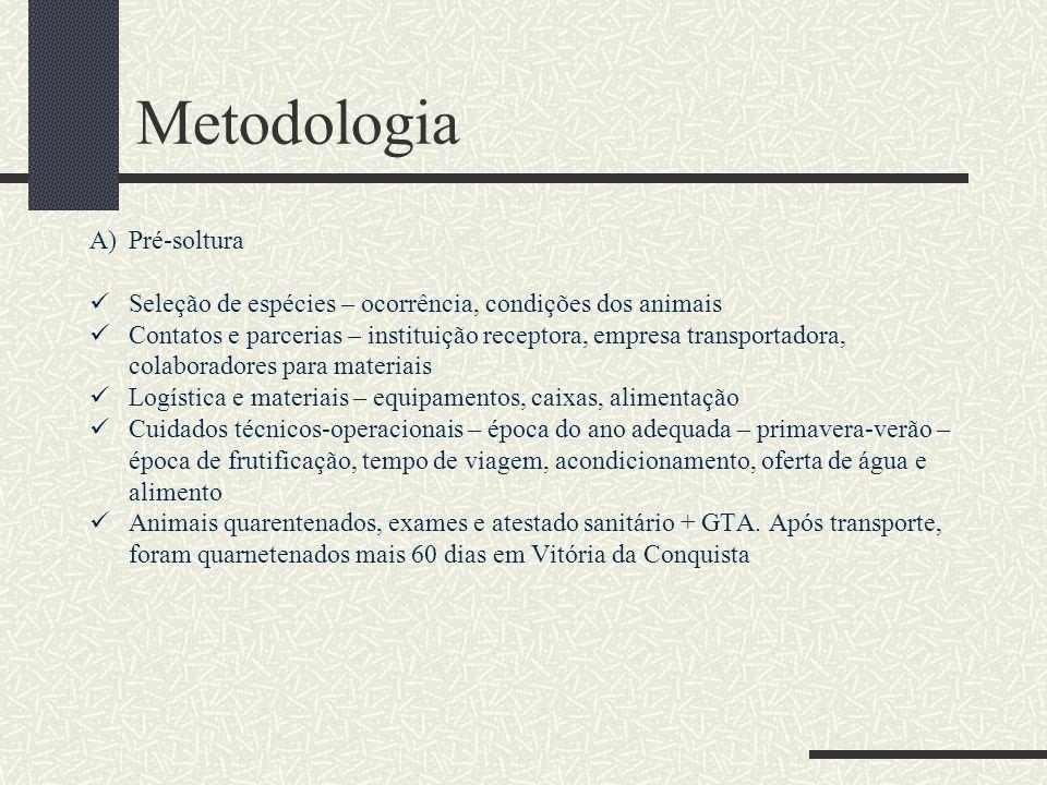 Metodologia A)Pré-soltura Seleção de espécies – ocorrência, condições dos animais Contatos e parcerias – instituição receptora, empresa transportadora