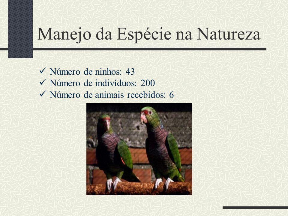 Manejo da Espécie na Natureza Número de ninhos: 43 Número de indivíduos: 200 Número de animais recebidos: 6