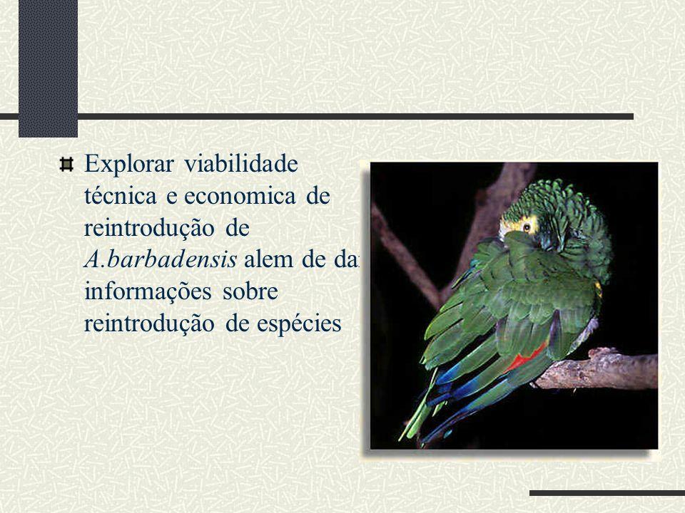 Explorar viabilidade técnica e economica de reintrodução de A.barbadensis alem de dar informações sobre reintrodução de espécies