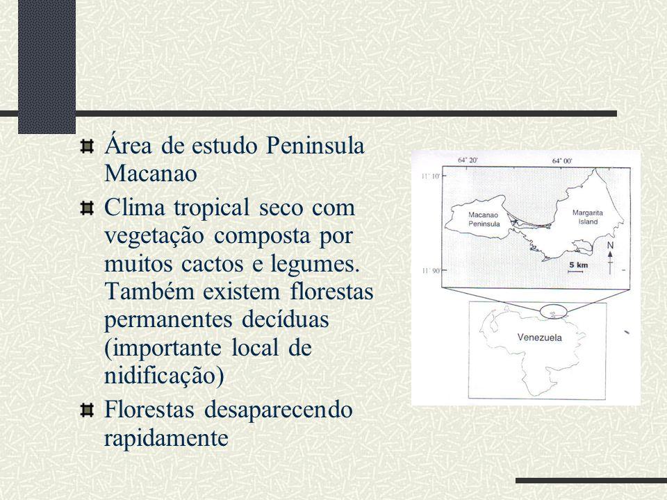 Área de estudo Peninsula Macanao Clima tropical seco com vegetação composta por muitos cactos e legumes. Também existem florestas permanentes decíduas