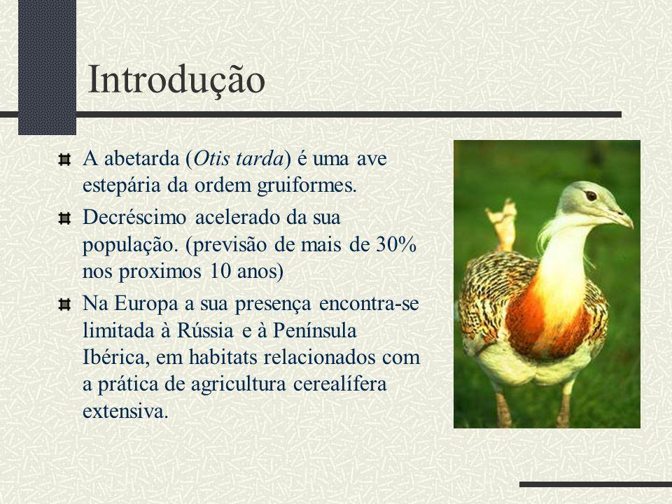 Introdução A abetarda (Otis tarda) é uma ave estepária da ordem gruiformes. Decréscimo acelerado da sua população. (previsão de mais de 30% nos proxim