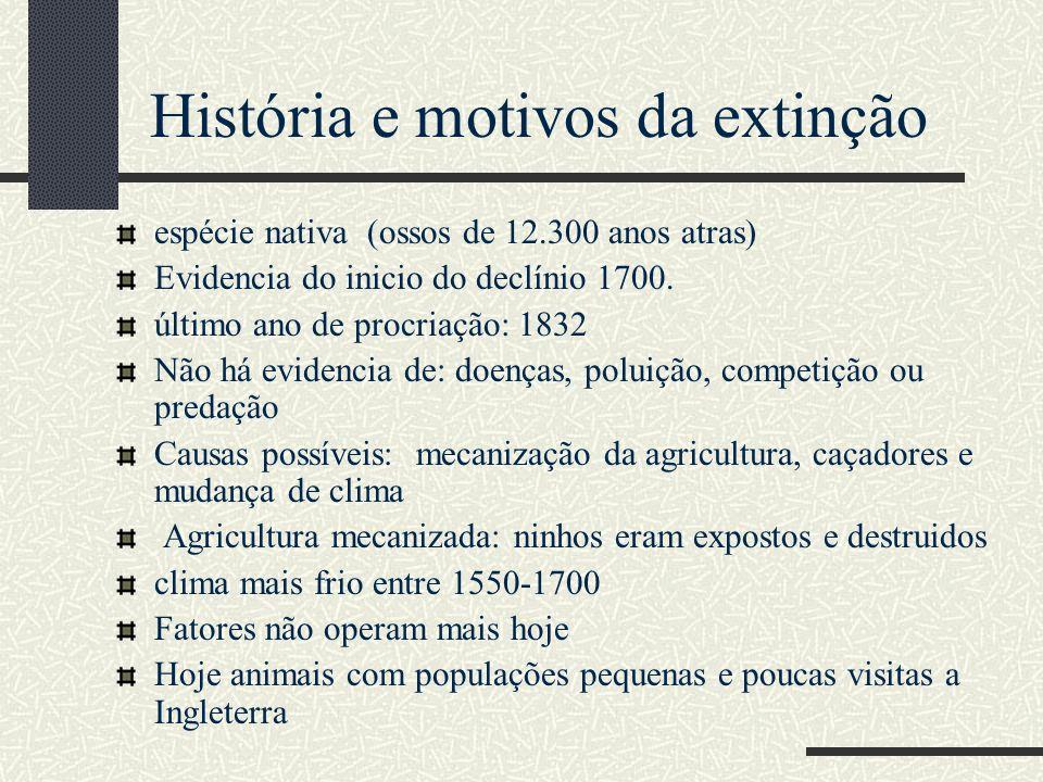 espécie nativa (ossos de 12.300 anos atras) Evidencia do inicio do declínio 1700. último ano de procriação: 1832 Não há evidencia de: doenças, poluiçã