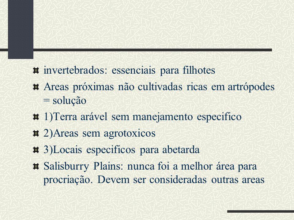 invertebrados: essenciais para filhotes Areas próximas não cultivadas ricas em artrópodes = solução 1)Terra arável sem manejamento especifico 2)Areas