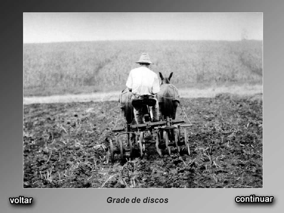 Prédio da Escola Superior de Agricultura Luiz de Queiroz