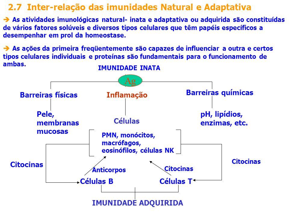 2.7 Inter-relação das imunidades Natural e Adaptativa As atividades imunológicas natural- inata e adaptativa ou adquirida são constituídas de vários f