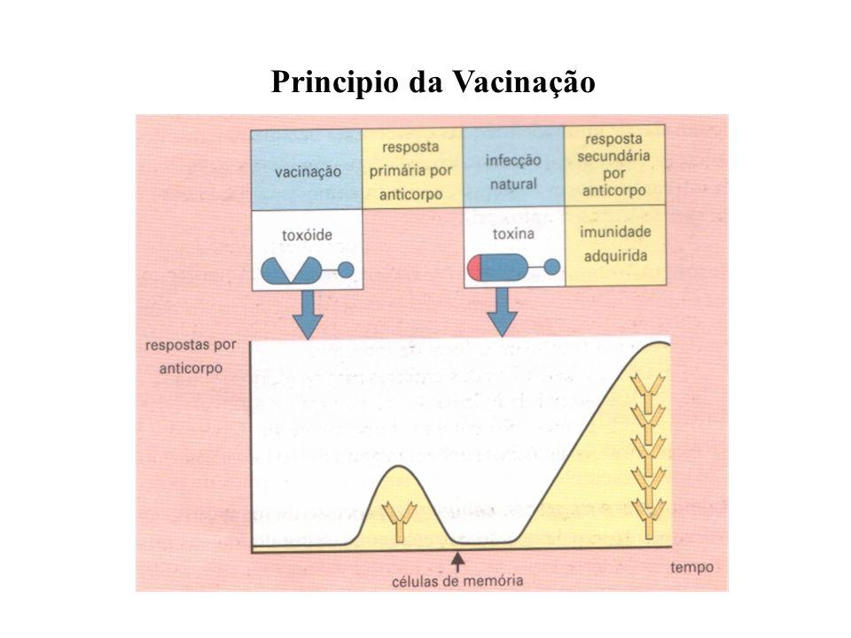 Principio da Vacinação