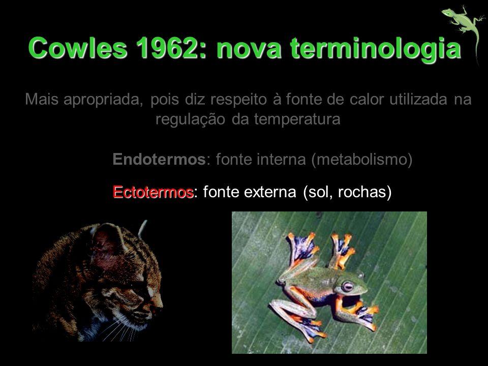 Endotermos: fonte interna (metabolismo) Ectotermos Ectotermos: fonte externa (sol, rochas) Cowles 1962: nova terminologia Mais apropriada, pois diz re