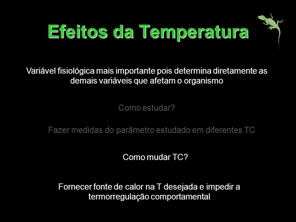 Efeitos da Temperatura Variável fisiológica mais importante pois determina diretamente as demais variáveis que afetam o organismo Como estudar? Fazer