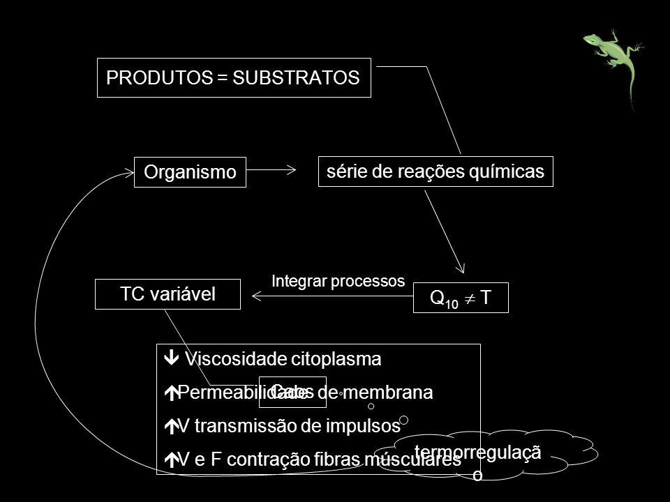 Organismo série de reações químicas Q 10 T PRODUTOS = SUBSTRATOS TC variável Integrar processos Caos termorregulaçã o Viscosidade citoplasma Permeabil