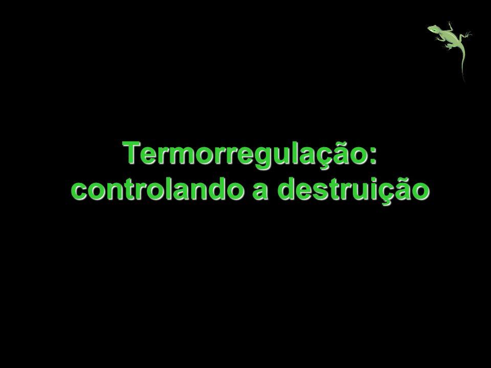 Termorregulação: controlando a destruição