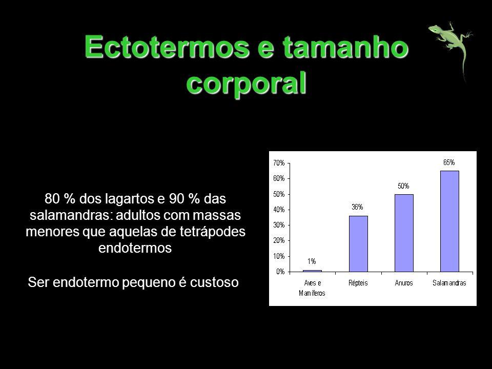 Ectotermos e tamanho corporal 80 % dos lagartos e 90 % das salamandras: adultos com massas menores que aquelas de tetrápodes endotermos Ser endotermo