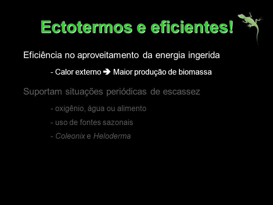 Ectotermos e eficientes! Eficiência no aproveitamento da energia ingerida - Calor externo Maior produção de biomassa Suportam situações periódicas de