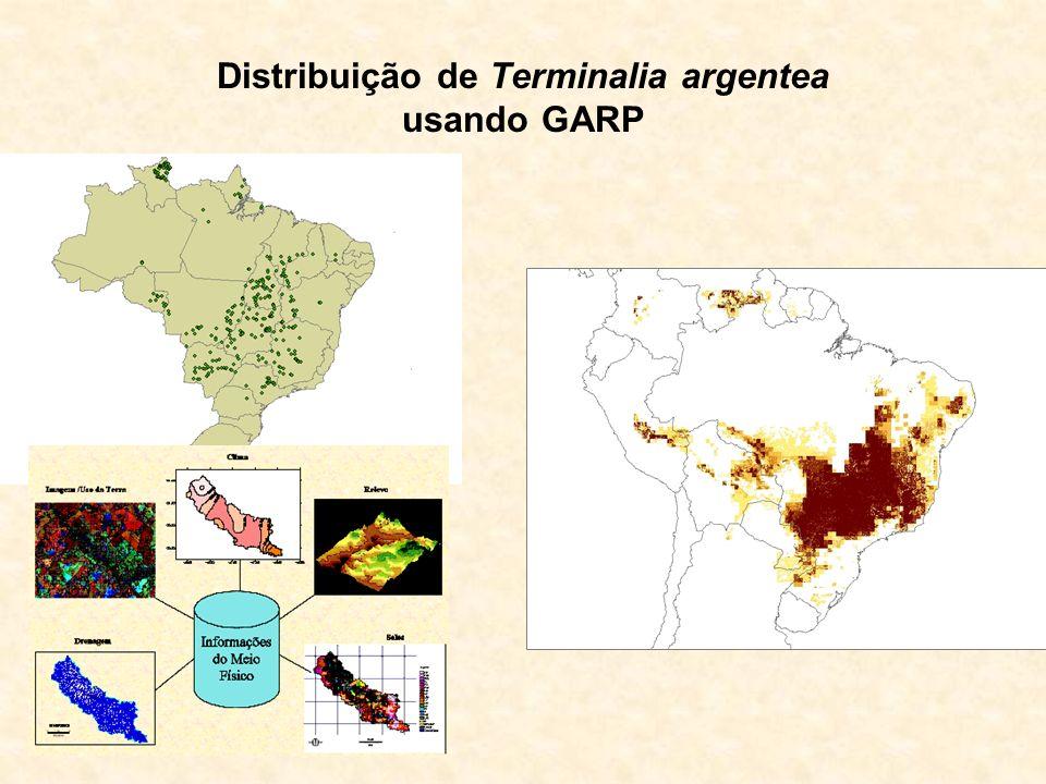 Distribuição de Terminalia argentea usando GARP
