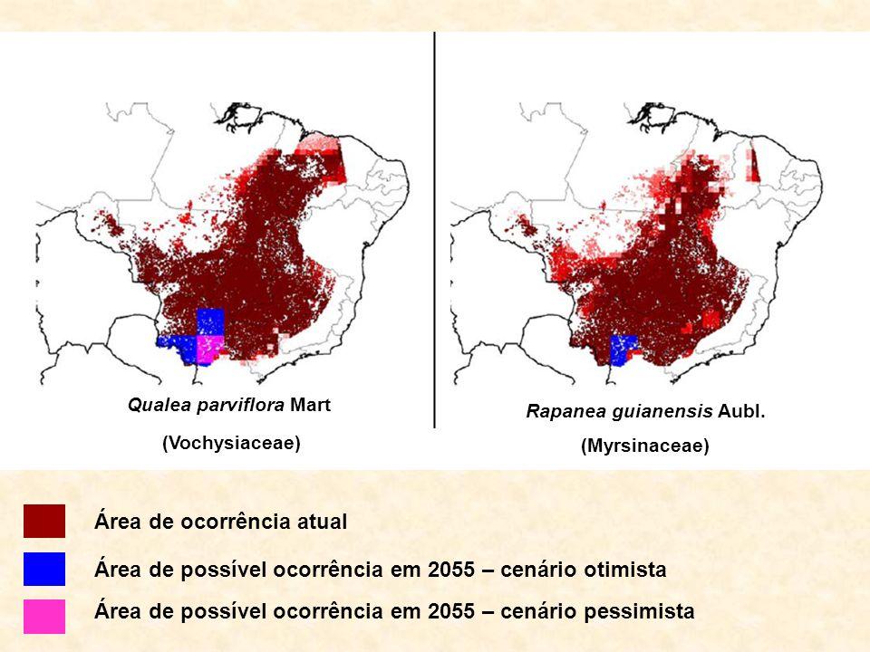 Qualea parviflora Mart (Vochysiaceae) Rapanea guianensis Aubl. (Myrsinaceae) Área de possível ocorrência em 2055 – cenário otimista Área de ocorrência