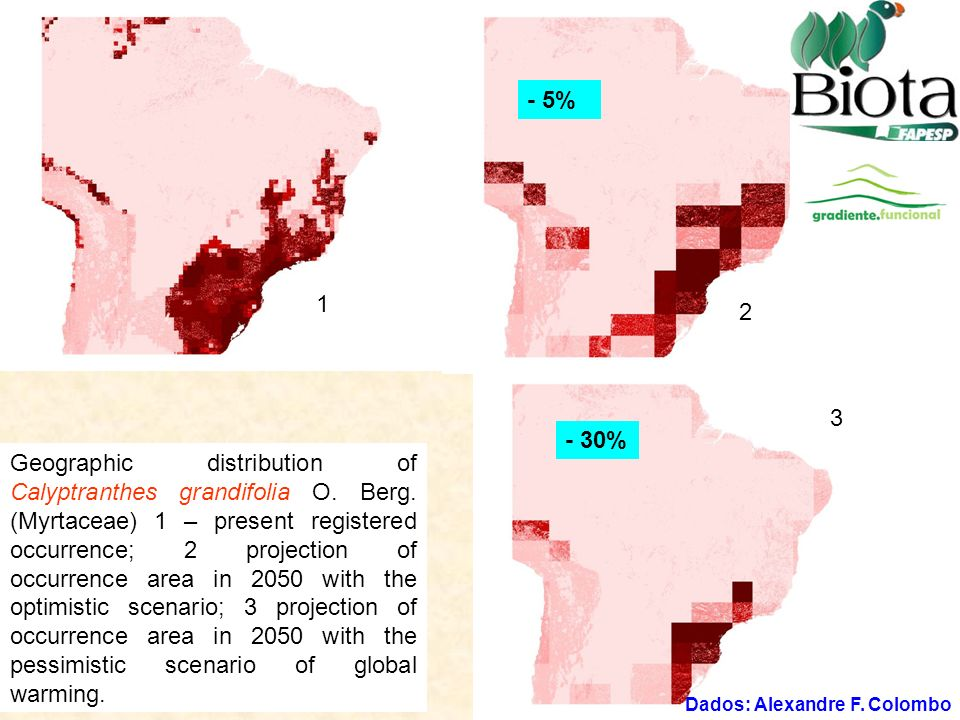 Geographic distribution of Calyptranthes grandifolia O. Berg. (Myrtaceae) 1 – present registered occurrence; 2 projection of occurrence area in 2050 w