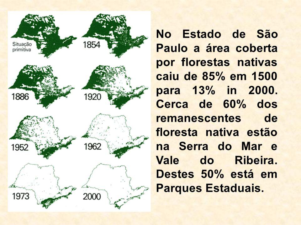 No Estado de São Paulo a área coberta por florestas nativas caiu de 85% em 1500 para 13% in 2000. Cerca de 60% dos remanescentes de floresta nativa es